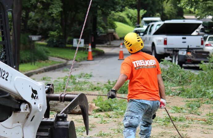 Arborist Consultations-Henderson's Complete Tree Services-We Offer Tree Trimming Services, Tree Removal, Tree Pruning, Tree Cutting, Residential and Commercial Tree Trimming Services, Storm Damage, Emergency Tree Removal, Land Clearing, Tree Companies, Tree Care Service, Stump Grinding, and we're the Best Tree Trimming Company Near You Guaranteed!