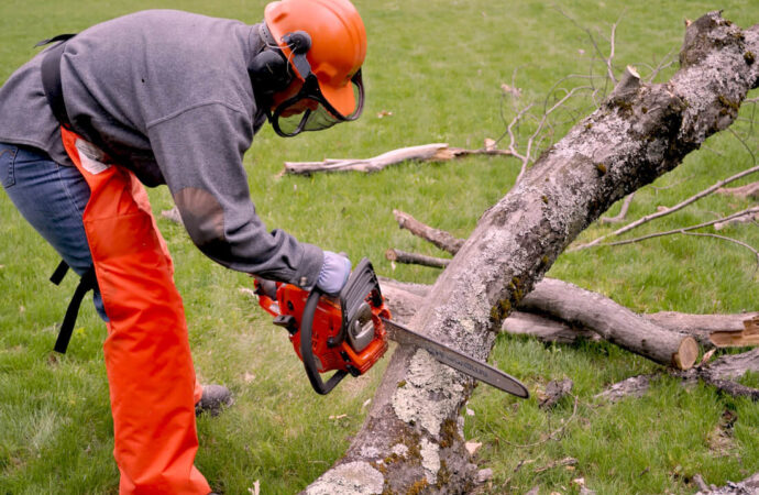 Emergency Tree Removal-Henderson's Complete Tree Services-We Offer Tree Trimming Services, Tree Removal, Tree Pruning, Tree Cutting, Residential and Commercial Tree Trimming Services, Storm Damage, Emergency Tree Removal, Land Clearing, Tree Companies, Tree Care Service, Stump Grinding, and we're the Best Tree Trimming Company Near You Guaranteed!