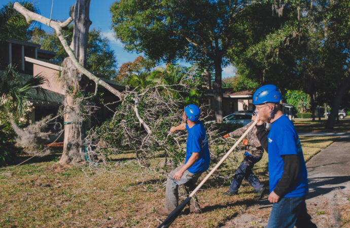 Residential Tree Services-Henderson's Complete Tree Services-We Offer Tree Trimming Services, Tree Removal, Tree Pruning, Tree Cutting, Residential and Commercial Tree Trimming Services, Storm Damage, Emergency Tree Removal, Land Clearing, Tree Companies, Tree Care Service, Stump Grinding, and we're the Best Tree Trimming Company Near You Guaranteed!