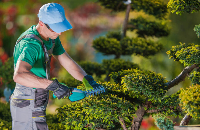 Tree Pruning-Henderson's Complete Tree Services-We Offer Tree Trimming Services, Tree Removal, Tree Pruning, Tree Cutting, Residential and Commercial Tree Trimming Services, Storm Damage, Emergency Tree Removal, Land Clearing, Tree Companies, Tree Care Service, Stump Grinding, and we're the Best Tree Trimming Company Near You Guaranteed!