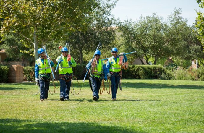 Silverado Ranch-Henderson's Complete Tree Services-We Offer Tree Trimming Services, Tree Removal, Tree Pruning, Tree Cutting, Residential and Commercial Tree Trimming Services, Storm Damage, Emergency Tree Removal, Land Clearing, Tree Companies, Tree Care Service, Stump Grinding, and we're the Best Tree Trimming Company Near You Guaranteed!